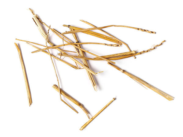 fortum bio2x straw