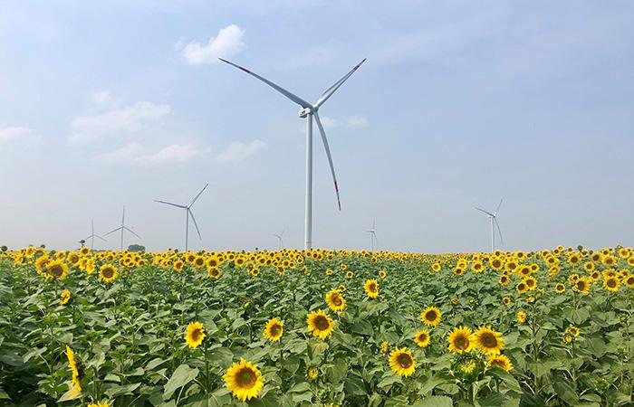 Ulyanovsk wind park